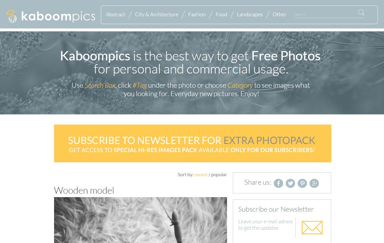 Kaboompics.com   Free Hi Res photos