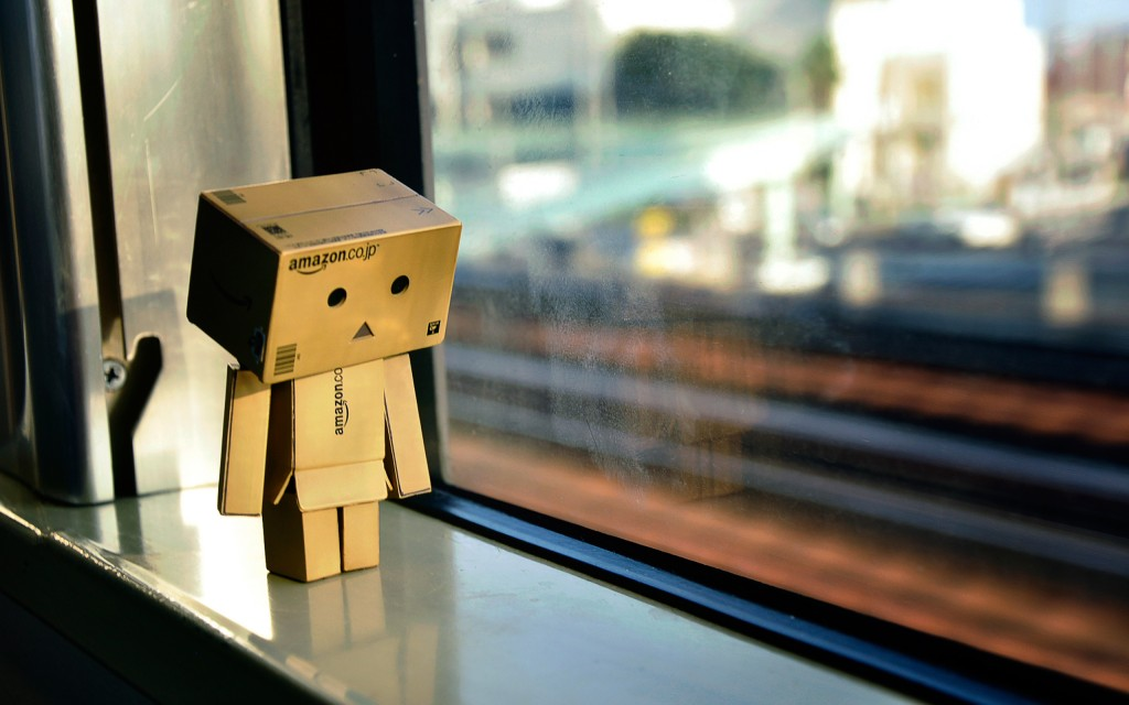 danbo-amazon-box